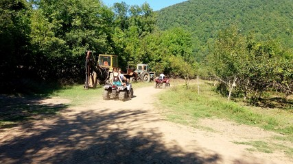 Поездка на квадроцикле фото