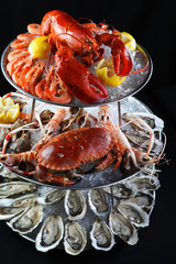 Seafood buffet with lobster, oyster, crabs and mantis shrimps on