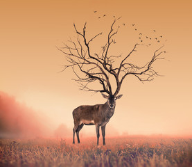 Fotobehang Bestsellers Conceptual Deer stag , a dry tree as red deer stag