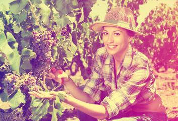 Woman working on winery yard