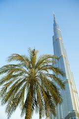 Dubai skyline features modern skyscraper of Burj Khalifa and date palm agains dusty blue sky