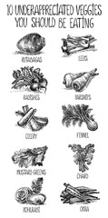 Veggies set. Vector hand drawn graphic illustration. Sketchy monochrome style.