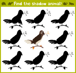 Educational game for children of kindergarten and school age on the development of logic. Nightingale forest bird. Vector