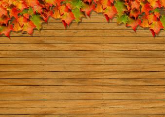 Autumn background image