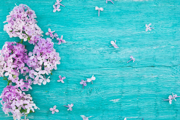 Lilac blossom on turquoise rustic wooden background