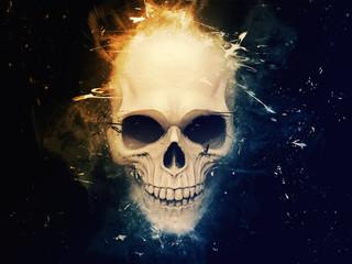Stylish skull ilustration