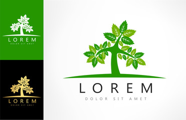 green tree logo vector