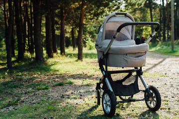 Baby stroller in forest