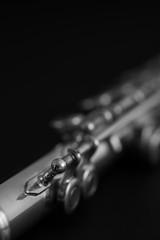 Macro a flauta travesera.