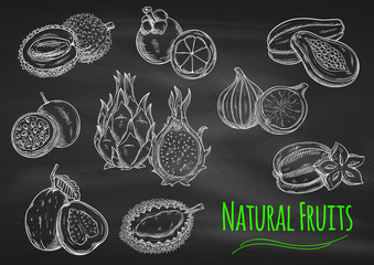 Exotic fruits chalk sketches on blackboard
