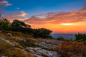 Colorful blueberry bushes are surrounded with rocky granite outcroppings at High Point State Park, New Jersey sunset