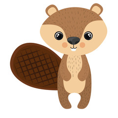 Beaver cartoon icon. Forest animal theme. Isolated design. Vector illustration