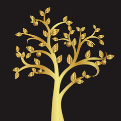 Golden apple tree