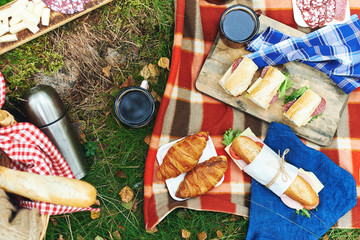 picnic at forest