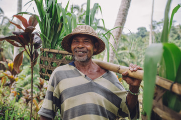 Happy senior farmer carrying a yoke on his shoulders