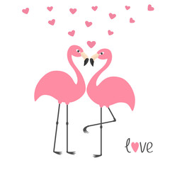 Pink flamingo couple and hearts. Word love. Exotic tropical bird. Zoo animal collection. Cute cartoon character. Greeting card. Flat design. White background Isolated