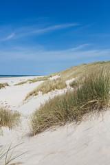 Papiers peints La Mer du Nord Weite Dünen am Strand im Sommer