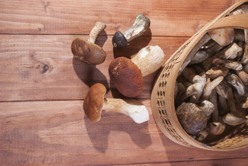 Basket with mushrooms on wooden background lying beside a pile of mushrooms.