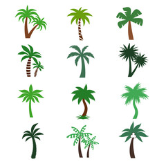 Color palm trees vector silhouettes