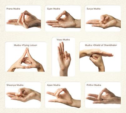 "set of 9 mudras. It includes such mudras: Prana,Gyan, Apan, Prithvi, Surya, Shoonya, Vayu,  ""Shield of Shambhala"" and  ""Flying lotus"". Gestures is  isolated on white background."