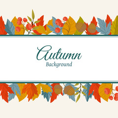 Autumn leaves fall on border vector illustration. Background with hand drawn autumn leaves. Design elements.