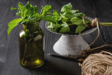 Sprig of mint in a green garden pot on a dark wooden background