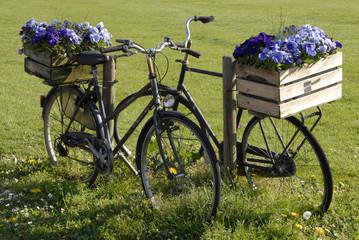 Photo on textile frame Flower shop 2 zwarte fietsen met kratten bloemen