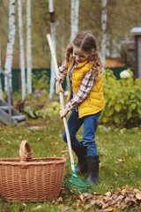 happy child girl playing little gardener in autumn and picking leaves into basket. Seasonal garden work. Backyard cleaning.