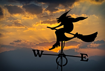 Weather vane is a home instrument showing direction of wind - typically used as an architectural ornament to the highest point of a building