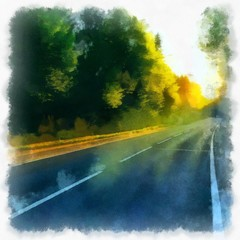 morning highway along the forest in the rays of the bright sun