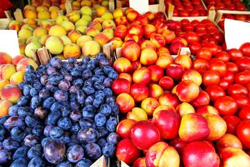 Organic fresh vegetables and fruit