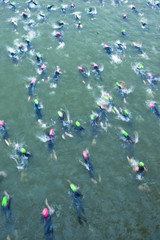 Triathletes swimming during a race.