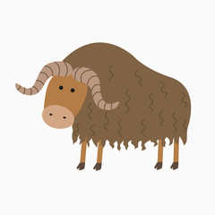 musk ox illustration for the children
