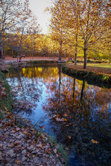 Autumn landscape with colorful leaves, river and reflections in