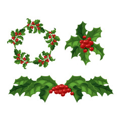 Christmas berry decoration vector set.