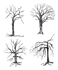 set hand-drawn silhouettes of trees