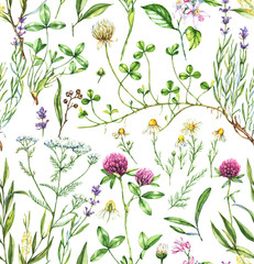 Hand-drawn watercolor seamless botanical pattern with different plants. Repeated natural background with meadow and medical plants: chamomile, trefoil, lavender, tea tree and other.