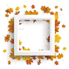 White Frame Autumn Foliage