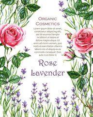 template. Floral drawing for the greeting cards, invitations, personalized card and different decorations, for packaging, cosmetics.