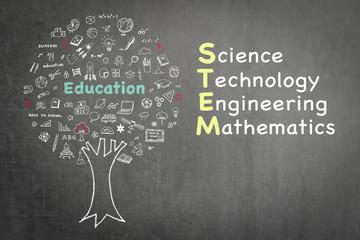 STEM education tree: Science Technology Engineering Mathematics knowledge-based educational integration school practice illustrative graphic design doodle on green chalkboard blackboard background