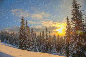 Winter landscape on a sunset.