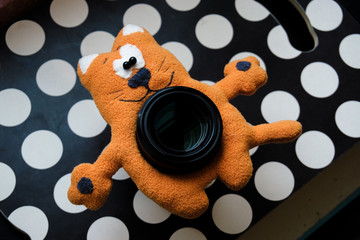 orange cat toy on the lens for photographing children