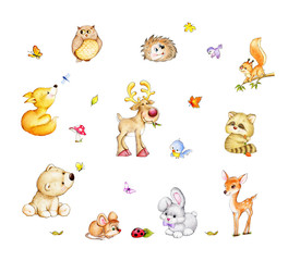 Collection of cute forest animals - bear, fox, squirrel, hedgehog, raccoon, rabbit, deer, moose, mouse, owl, birds