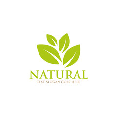 nature leaf green logo icon