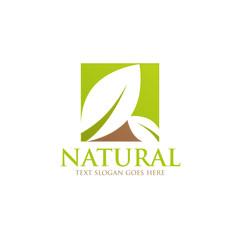 nature leaf green logo icon
