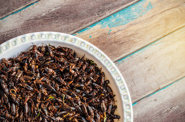 Fried crickets on a wooden
