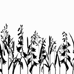 Silhouette grasses and wild flowers on white background. Hand drawn vector illustration.