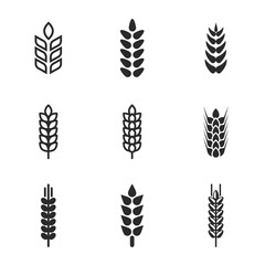 Wheat vector icons.