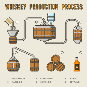 Whiskey production process. Distillation and aging whisky infographics