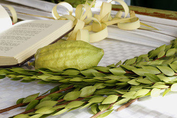 Four species used on Jewish holiday Sukkot ready to be put together on a background of a holy book
